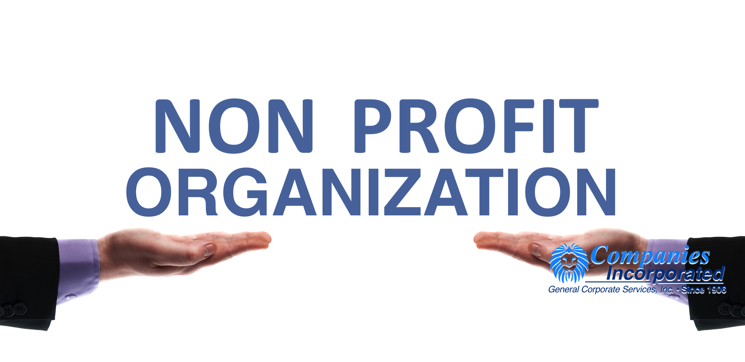 how to start a nonprofit organization / corporation, definition