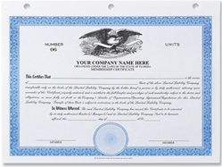 eagle stock certificates