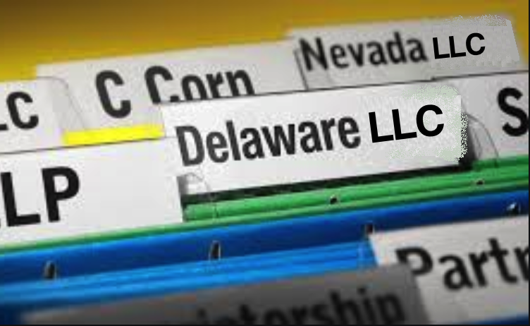Delaware vs Nevada LLC